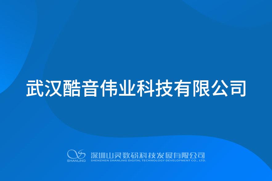 武汉酷音伟业科技有限公司